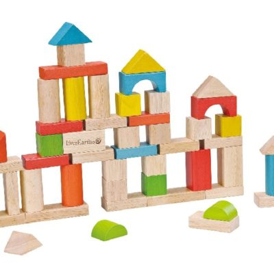 Everearth 50pc building blocks