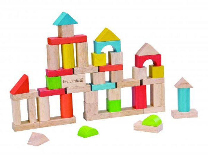 EverEarth 50 piece building blocks