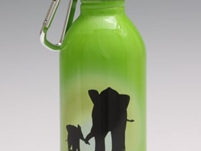 Elephant designed drink bottle