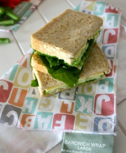 4myearth abc sandwich wrap
