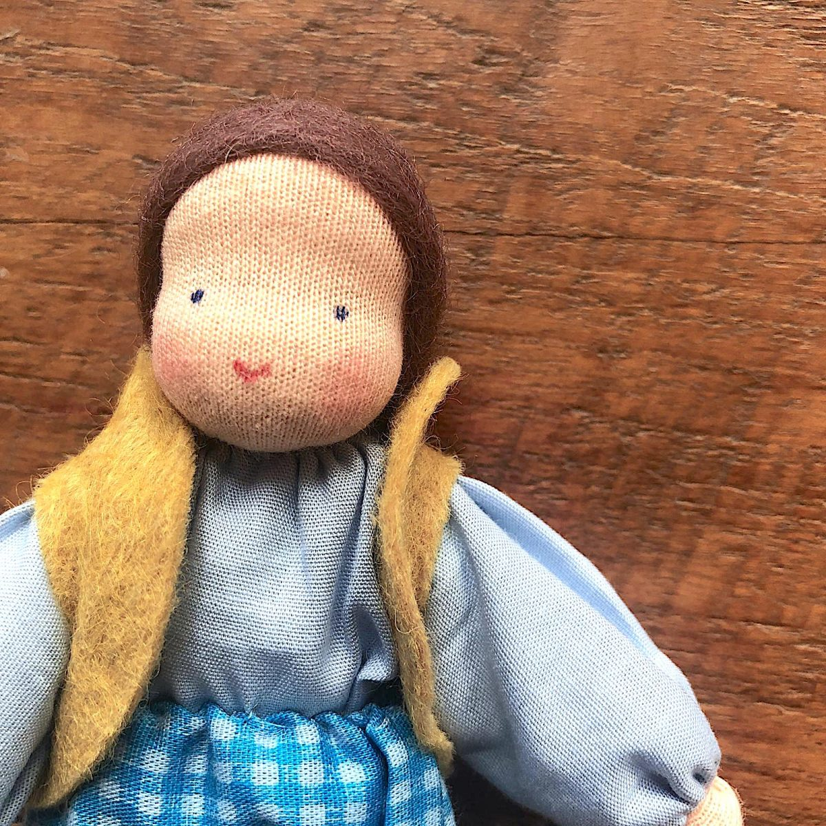Male evi doll with brown hair